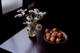Horvat_foto_fiori